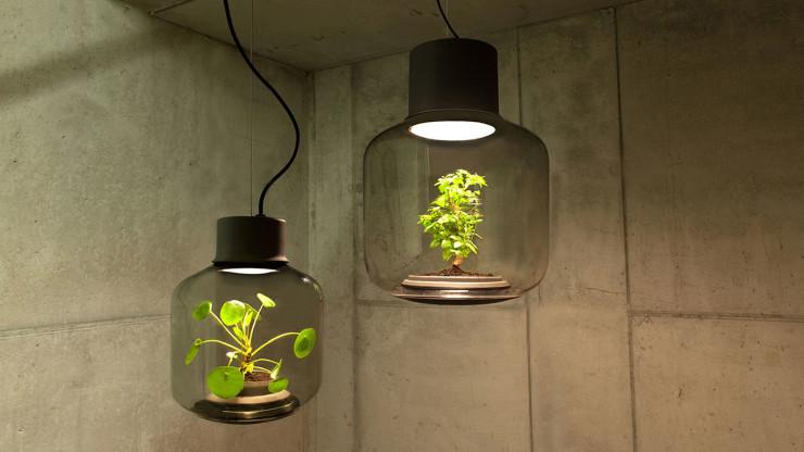 Lamp-mygdal-nui-studio-lamp-lit-terrariums-gangherista-doppelgangher-1