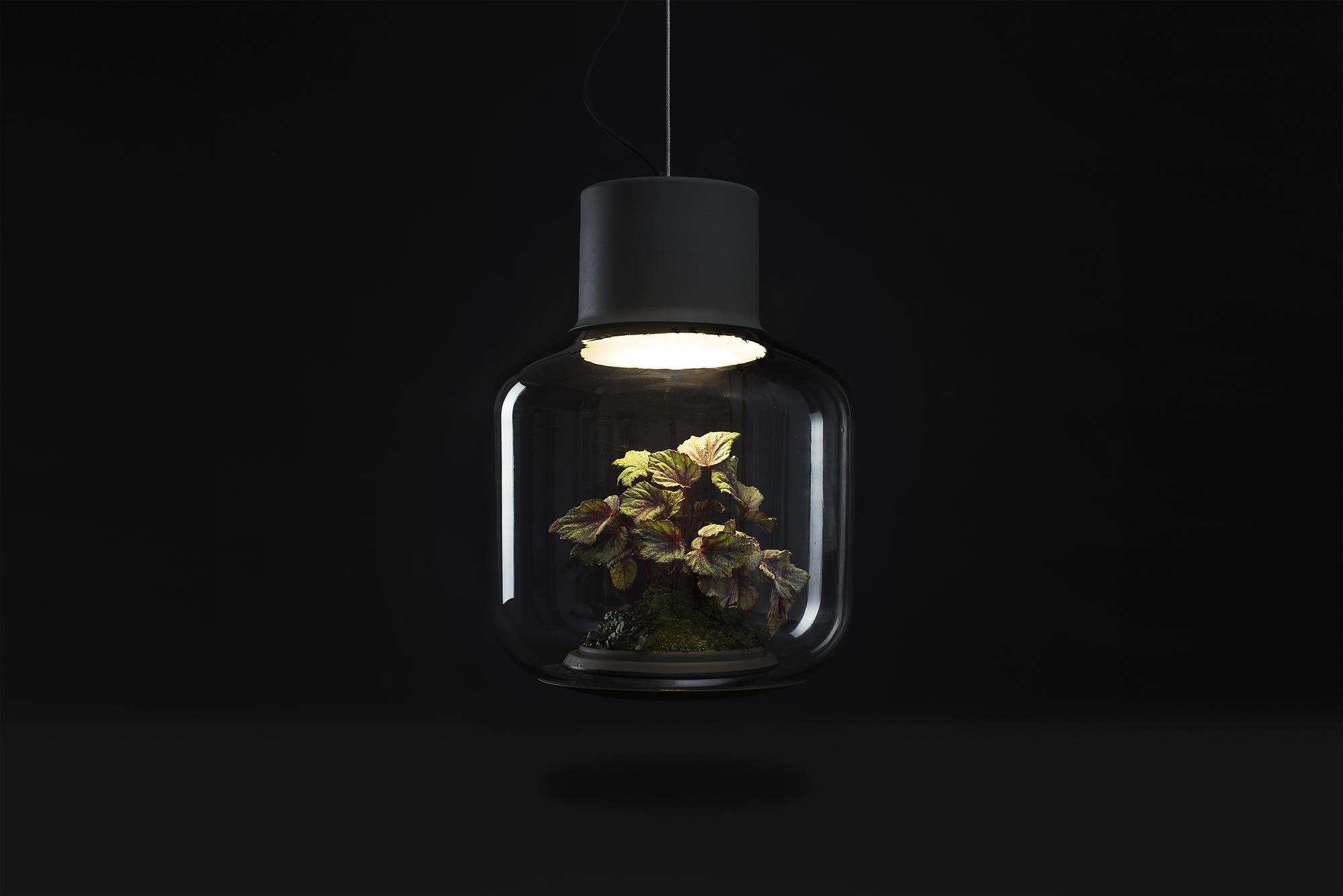 Lamp-mygdal-nui-studio-lamp-lit-terrariums-gangherista-doppelgangher-3