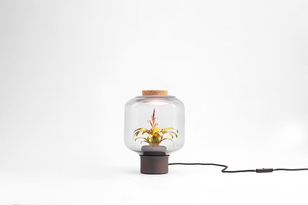 Lamp-mygdal-nui-studio-lamp-lit-terrariums-gangherista-doppelgangher-5